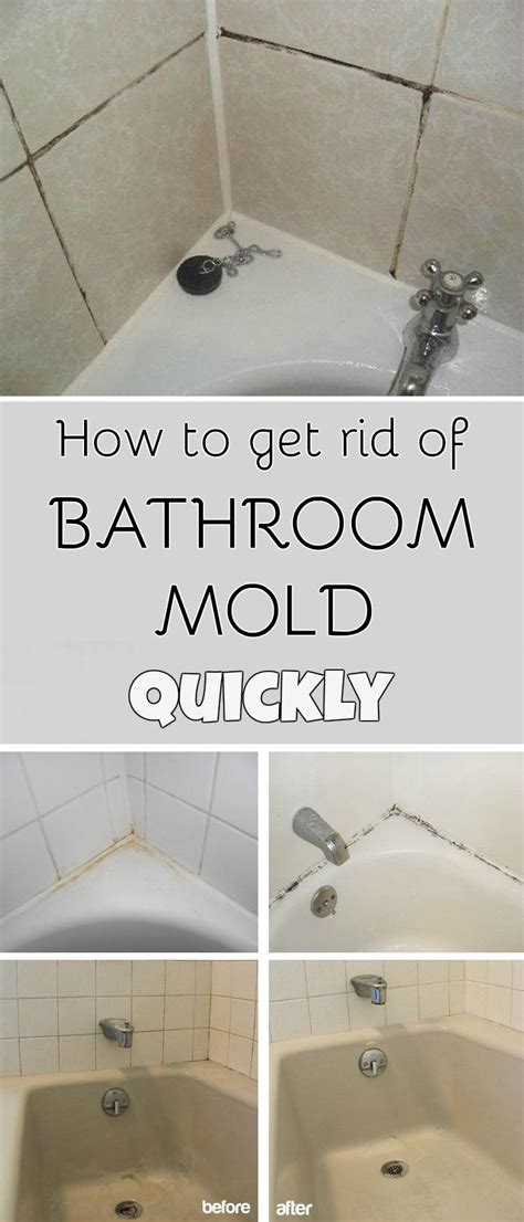 what to use to clean mold in bathroom best 25 bathroom mold ideas on pinterest mold in