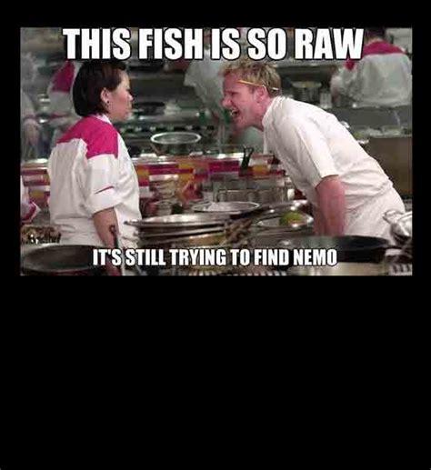 the best of gordon ramsay the best of the gordon ramsay meme craveonline