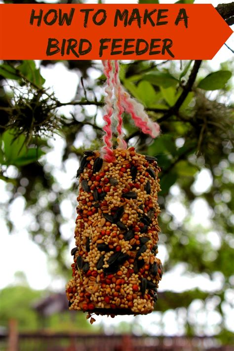 how to make bird feeders with lard image mag