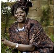 Wangari Maathai A Mission Of Peace For The Environment  Latest News