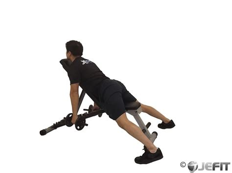 bench shrugs dumbbell middle back shrug exercise database jefit