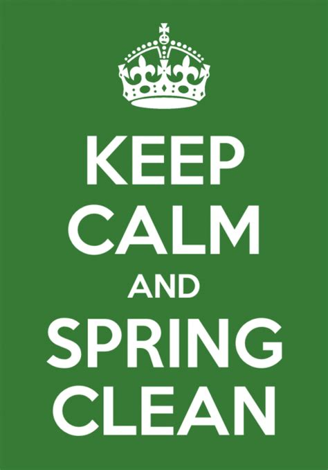 spring cleaning meaning spring cleaned definition what is