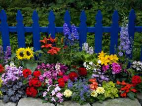 fond ecran paysage nature jardin fleuri sur barriere bleu
