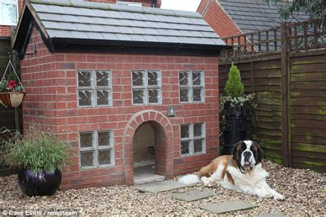 sty building his dog house dog owner spends 163 1 800 building a kennel which is an exact replica of own house