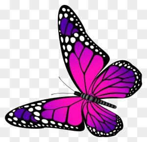 Small Butterfly Clipart