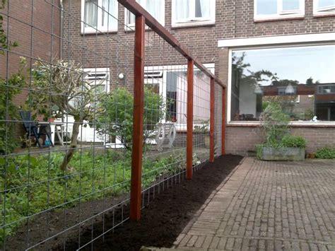 afscheiding tuinen maken treevision tuinen erfafscheiding met hedera youtube