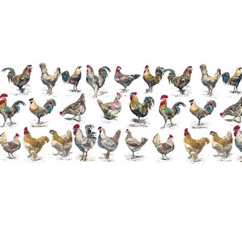 Poules Decoration by Poules Et Coqs D 233 Cor Panoramique Maison Images D 201 Pinal