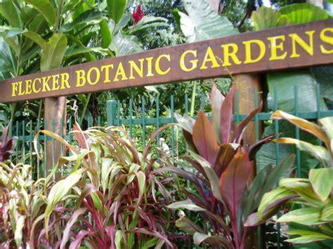 Beautiful Cafe Friendly Staff Review Of Botanic Gardens Cairns Botanical Gardens Cafe