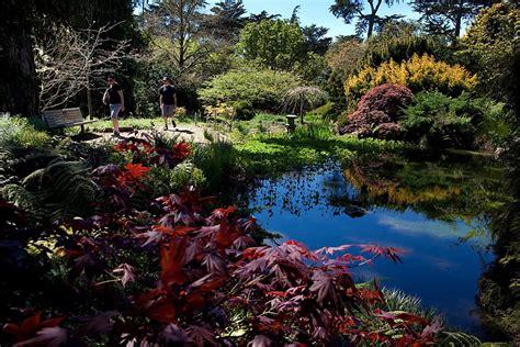 San Francisco Botanical Gardens Botanical Garden Fee Isn T Keeping Visitors Away San Francisco Chronicle