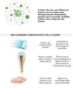 alimenti contengono fluoro il fluoro propriet 224 e assunzione con l alimentazione