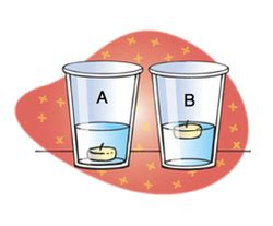 What Is Floating And Sinking by Floating And Sinking Archimedes Principle