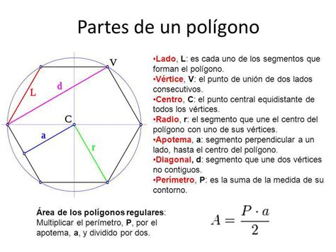 figuras geometricas y sus partes partes del pol 237 gono