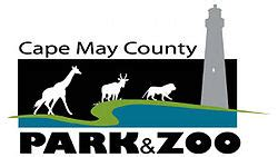 cape may county news new jersey local news njcom zip line course coming to county zoo 98 7 the coast wczt