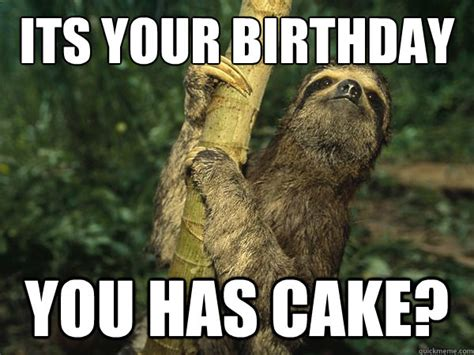 Nasty Birthday Meme - happy birthday sloth nasty birthday sloth quickmeme