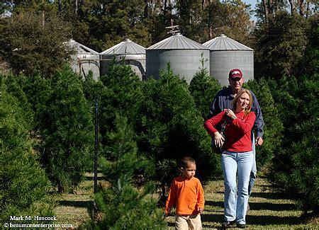 photojournalism beaver s christmas tree farm