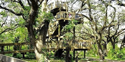 Tree Tops Park   Broward County Parks   Approved Vendor