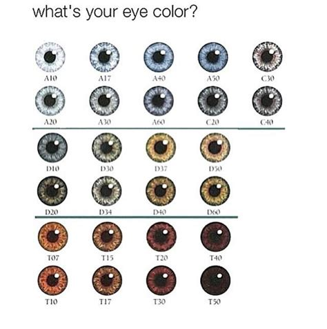 what is this color what is your eye color girlsaskguys