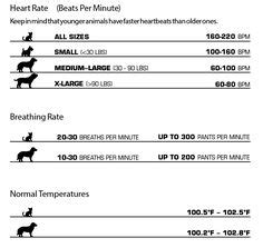 normal rate for dogs veterinary reference humor cool stuff on veterinary technician veterinary