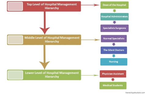 Government For Mba Operations by Hospital Management Hierarchy Chart Hierarchystructure