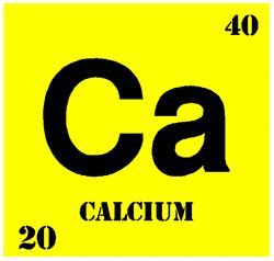 what is the state of calcium at room temperature general information the of calcium