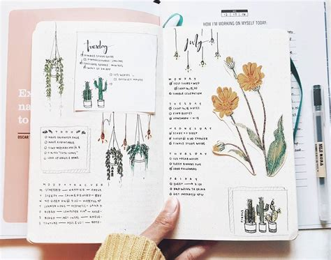 journal plant layout design study with inspo the evolution of my bullet journal in