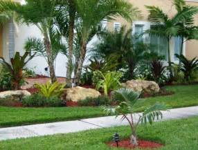 ideas front: tropical front yard landscaping ideas with palm trees tropical front