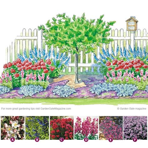 Hummingbird Garden Layout 25 Best Ideas About Hummingbird Garden On Pinterest Hummingbird Flowers Hummingbird Plants