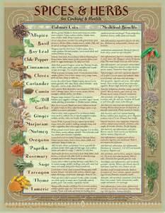 herbs chart spice herb kitchen chart by amalgamarts on etsy