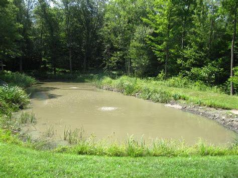 pond  lake connection problem ponds lakes