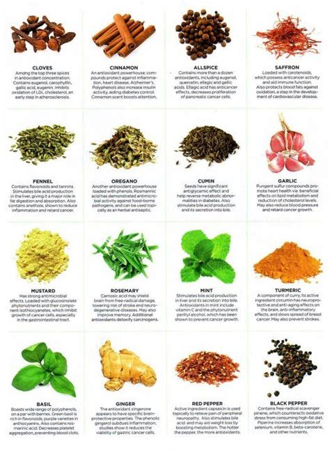herbs chart wonderful chart highlighting the benefits of common spices