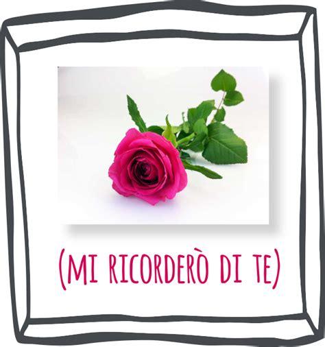 fiori da essiccare come far essiccare fiori e bouquet fai da te silica gel