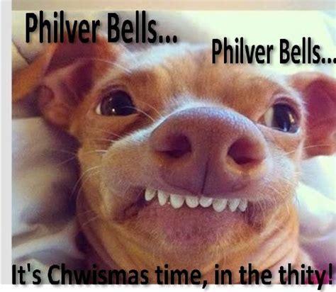 Overbite Dog Meme - 17 best images about lisp meme dog on pinterest