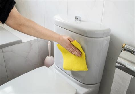 steps in cleaning the bathroom how to clean a toilet bob vila