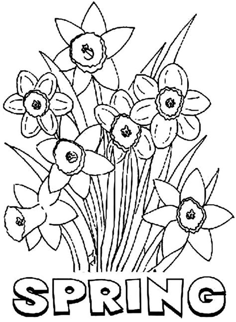 spring flower coloring pages coloring pages