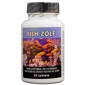 metronidazole 250 mg for dogs fish zole metronidazole 250 mg 30 tablets vetdepot