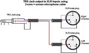 b guitar input wiring b free engine image for user manual