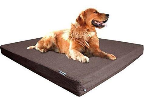 cama ortopedica de rehabilitacion  perros novecan murcia novecan ortopedia  mascotas