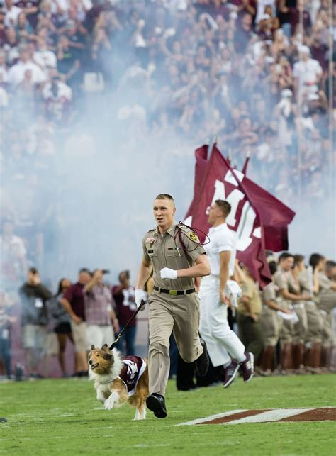 a and m traditions reveille aggie traditions