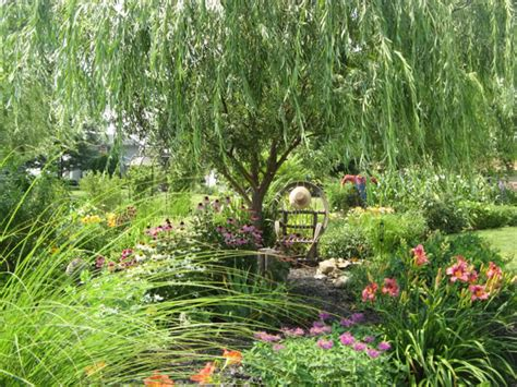 Willow Gardens by Your Writing Spot Books Such Literary Management