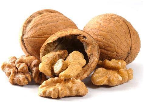 Health Benefits Of Black Walnut Organic Facts