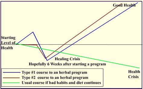 What Is A Healing Crisis Detox Reaction by Are You Experiencing A Healing Crisis