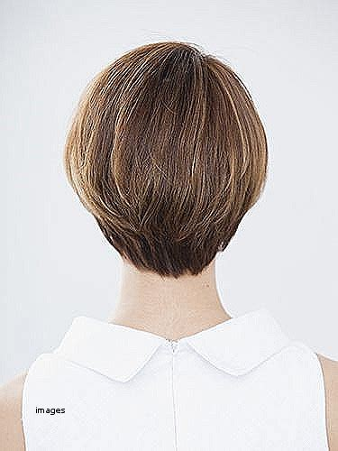 curly and short haircut showing back short hairstyles lovely back view of short curly hairstyles