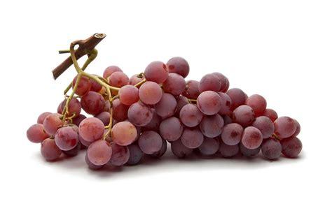 solfiti mal di testa solfiti i conservanti vino edo