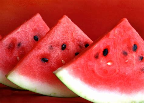 history of watermelon watermelons birds buddhists and a legend le minh khai s seasian history