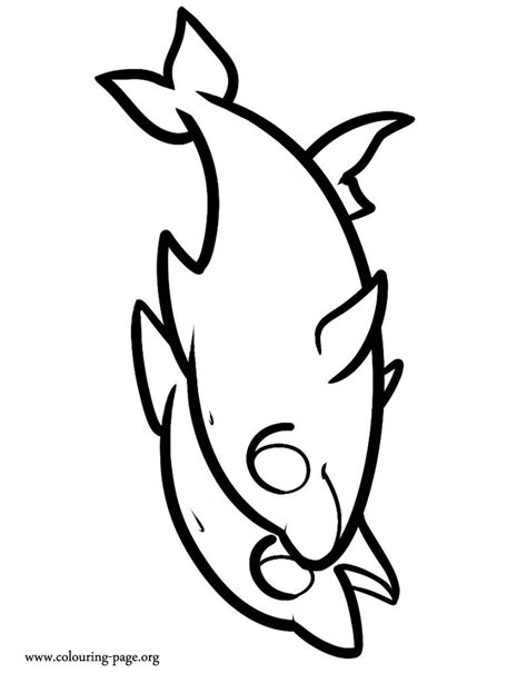 cute coloring pages of dolphins cute dolphin coloring pages