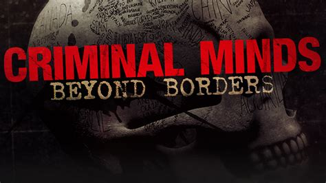 Will A 20 Year Felony Show On A Background Check Criminal Minds Beyond Borders A Crime Travel Show