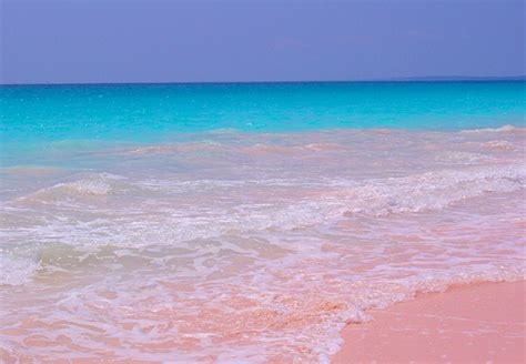 beaches with pink sand the most unusual incredible and hypnotizing beaches in