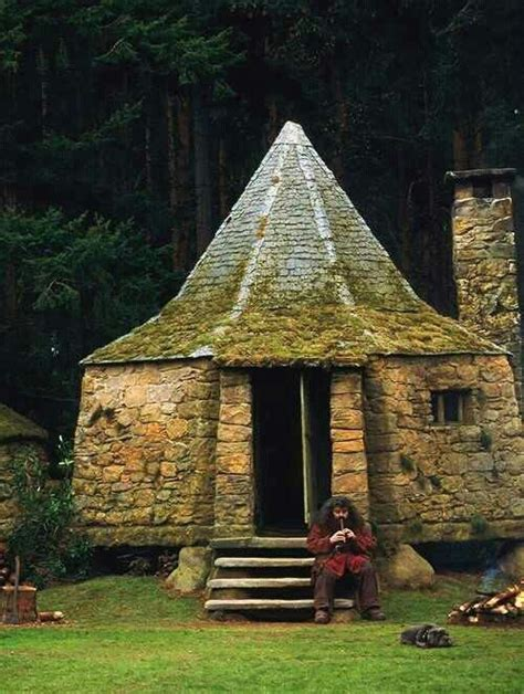 Hagrid S House Diorama Pinterest