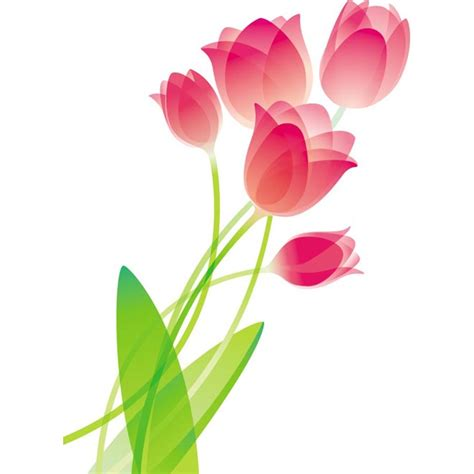 Benihbijibibit Bunga Tulip Blanc pink glossy tulip flower bouquet vector illustration free clipart best clipart best