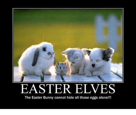 Easter Bunny Meme - funny easter bunny memes photo album reikian
